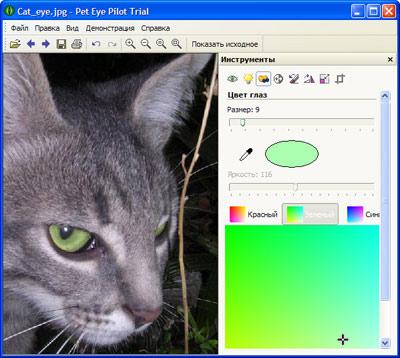 Скриншот программы (версии софта) Pet Eye Pilot 3.10.0 #1