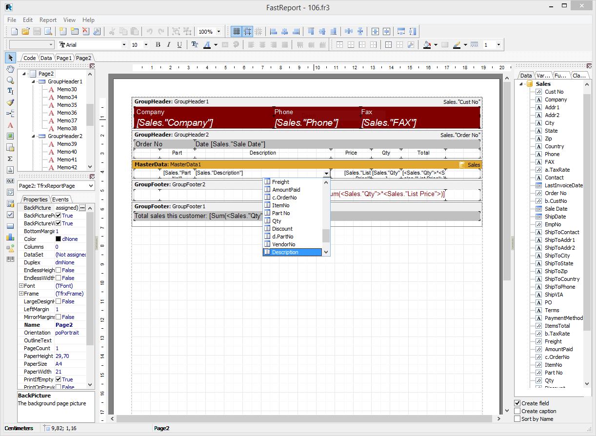 Скриншот программы (версии софта) FastReport VCL 6.1 Standart Edition #6