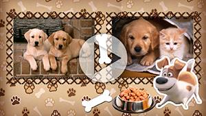Пакет слайдов Тайная жизнь домашних животных