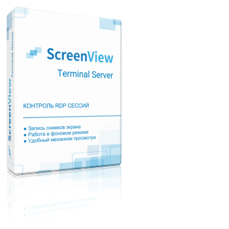 ScreenView Terminal Server