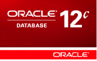 Oracle Database 12c Standard Edition. купить в Allsoft.ru