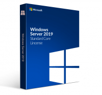 Microsoft Windows Server Standard 2019 (OEM)