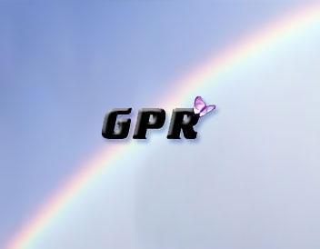 GPR система автоматизации бизнеса