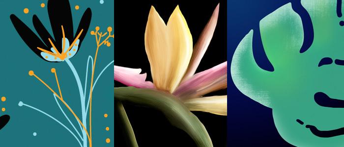 Цифровое творчество. Графические планшеты, Photoshop & Illustrator